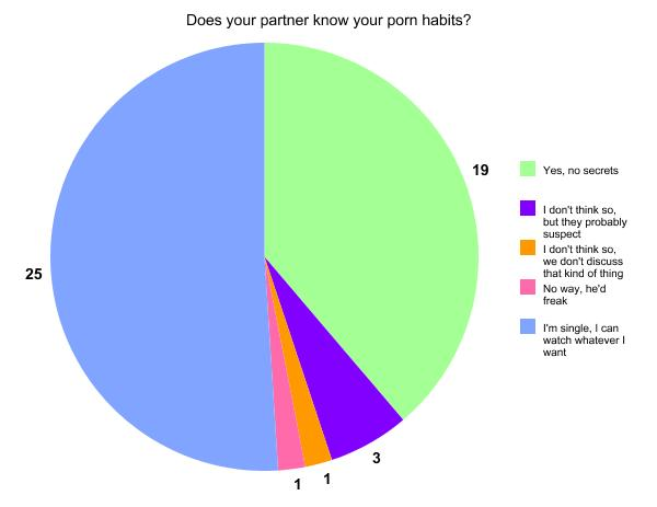 """why do guys look at porn Feb 2014  """"My partner would watch porn and masturbate while I was laying in bed ."""